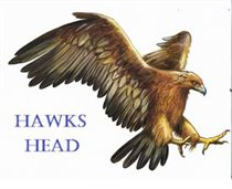 Hawks Head