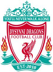 Dysynni Dragons FC