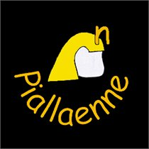 Piallaenne
